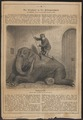 Elephas indicus - 1866 - Print - Iconographia Zoologica - Special Collections University of Amsterdam - UBA01 IZ22000067.tif