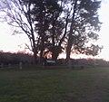 Ellwood Family Cemetery.jpg