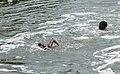 Enfants jouant dans la rivière Malanza (São Tomé) (11).jpg