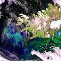 Envisat image over Iceland and the Denmark Strait ESA205430.jpg