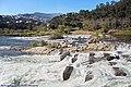 Escada de Peixe - Rio Mondego - Portugal (50611718307).jpg