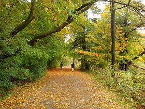 Centennial Park (Toronto) - Etobicoke Creek Trail at Centennial Park