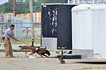 Eustis canine handlers certify international contractors 150831-F-GX122-059.jpg
