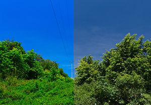 Lab color space - An example of color enhancement using LAB color mode in Photoshop. The left side of the photo is enhanced, while the right side is normal.