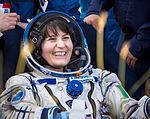 Expedition 43 Soyuz TMA-15M Landing (201506110006HQ).jpg