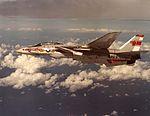 F-14A Tomcat of VF-1 in flight near Hawaii on 28 September 1974 (NNAM.1996.253.7417.051).jpg