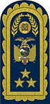 FAE - Pala de Teniente General.jpg