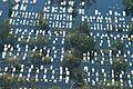 FEMA - 14777 - Photograph by Liz Roll taken on 09-04-2005 in Louisiana.jpg