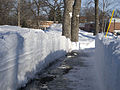 FEMA - 40252 - Path cut through a snow bank in Fargo, North Dakota.jpg