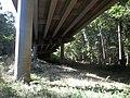 FL CR 249 Suwannee River bridge03.jpg
