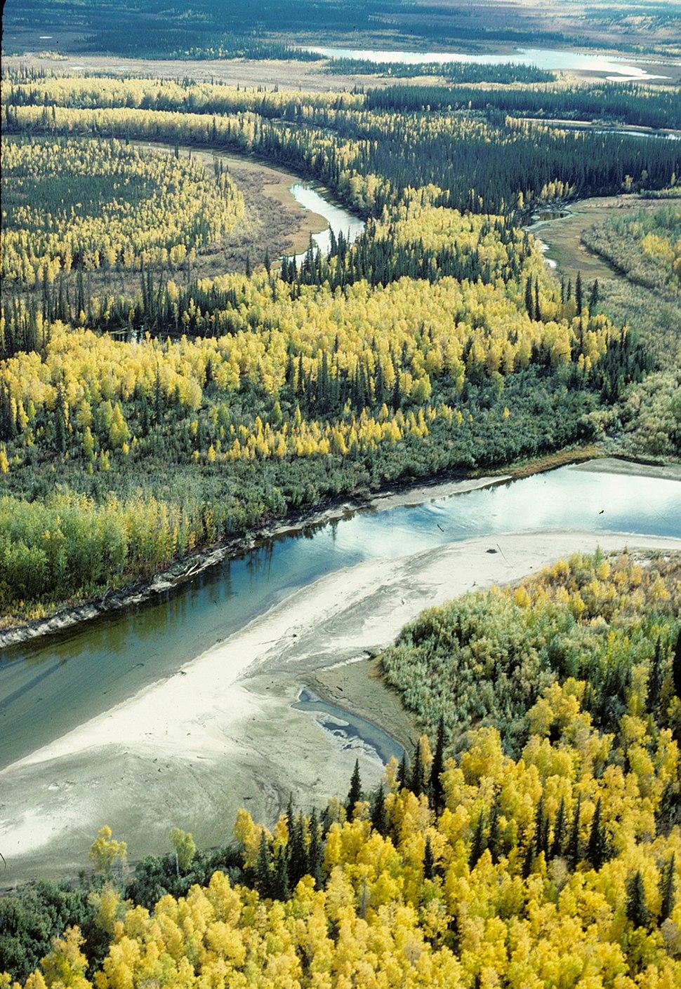 Fall on the Yukon Flats NWR