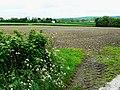 Farmland south of the A40, near Pwll-trap - geograph.org.uk - 1317668.jpg