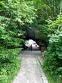 Felsentor Kuhstall - Sächsische Schweiz 02.JPG