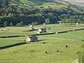 Field Barns in Gunnerside Bottoms - geograph.org.uk - 1206517.jpg