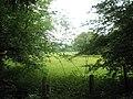 Field just off Tilmore Road - geograph.org.uk - 1342959.jpg