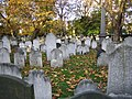 Finsbury, Bunhill Fields Burial Ground - geograph.org.uk - 607394.jpg