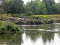Fishermen on the river Svislač near the Minsk sewage treatment plant - 1.jpg