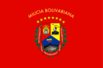 Flag of the Venezuelan National Militia.png