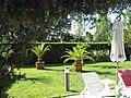 Flamingo hotel ~ garden - panoramio.jpg