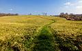 Flickr - Nicholas T - Native Lands County Park (10).jpg