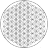 Flower of life-5level.png