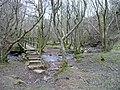Footbridge over the Honddu - geograph.org.uk - 734378.jpg