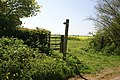 Footpath to Hadley End - geograph.org.uk - 419881.jpg
