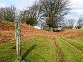Footpath to Rhyswg-ganol - geograph.org.uk - 653097.jpg