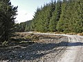Forestry road on Esgair Fawr - geograph.org.uk - 767503.jpg
