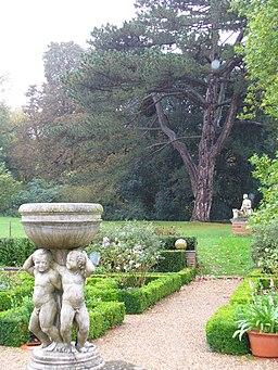 Formal Garden, Hatchlands - geograph.org.uk - 264836