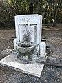 """Fountain, Riserva Naturale Statale """"Litorale Romano"""", Roma, Italia Mar 02, 2021 04-38-08 PM.jpeg"""