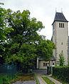 Fröschlgasse 12 Winterlinde.jpg