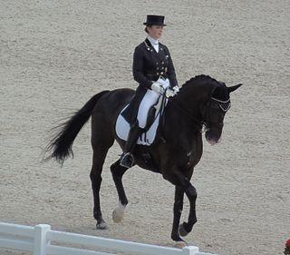 Judy Reynolds dressage rider