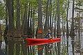 Franny kayaking in the tupelo gums.jpg