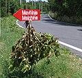 Frasca di osmizza a Malchina.jpg