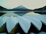 Mount Fuji from Lake Shōji in Yamanashi Prefecture