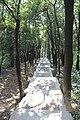 Futian, Shenzhen, Guangdong, China - panoramio (12).jpg