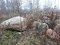 Głazy narzutowe na Kabatach (wydobyte przy budowie osiedli^) - panoramio.jpg