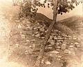 Galičnik, 1930ti.jpg