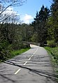 Galloping Goose Cycle-Walk Path. VIEW IN PANORAMIO FOR DESCRIPTION - panoramio.jpg