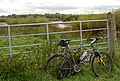 Gate onto overgrown Trans Pennine Trail. - geograph.org.uk - 537348.jpg
