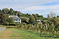 Geneva Countryside in Autumn - panoramio (97).jpg