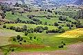 Gilan - Deylaman - panoramio (2).jpg
