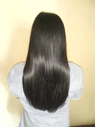 Human hair color - Image: Girl with long hair, rear view