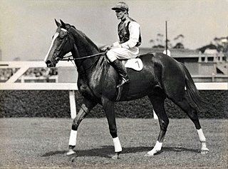 Gold Rod New Zealand-bred Thoroughbred racehorse