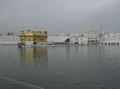 Golden temple 45 degree view.png