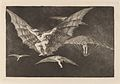 Goya - Modo de volar (A Way of Flying).jpg