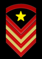 Grado di caporal maggiore capo scelto qualifica speciale Esercito italiano.png