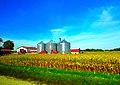 Grain Bins - panoramio (5).jpg