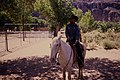 Grand Canyon National Park law enforcement riding on horseback. (e07beef1a1a047f987749c8d14875e6b).jpg